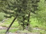 1270 Nevada Creek Ranch Drive - Photo 39