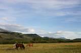Lot 33A Sun West Ranch - Photo 8