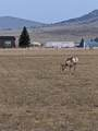Lot 72 Montana Way - Photo 5