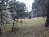 nkn Bear Tracks Road - Photo 10