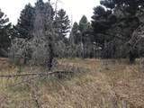 nkn Bear Tracks Road - Photo 11