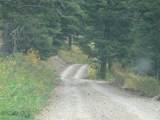 nkn Bear Tracks Road - Photo 13
