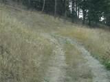 nkn Bear Tracks Road - Photo 15