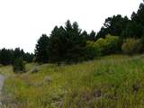 nkn Bear Tracks Road - Photo 17