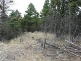 nkn Bear Tracks Road - Photo 20