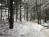 nkn Bear Tracks Road - Photo 21