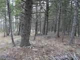 nkn Bear Tracks Road - Photo 24