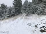 nkn Bear Tracks Road - Photo 28