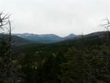 nkn Bear Tracks Road - Photo 29