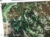 nkn Bear Tracks Road - Photo 31