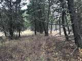 nkn Bear Tracks Road - Photo 5