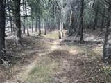 nkn Bear Tracks Road - Photo 6