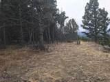 nkn Bear Tracks Road - Photo 8