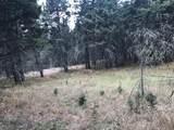 nkn Bear Tracks Road - Photo 9