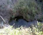 NHN Rock Canyon Lane - Photo 20