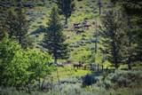 88 Upper Greyson Creek Road - Photo 40