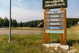 3088 Lone Mountain Trail - Photo 20