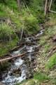 TBD Mol Heron Creek Road - Photo 27