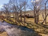 493 Threadgrass/Cotton Willow - Photo 11