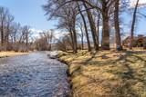 493 Threadgrass/Cotton Willow - Photo 47