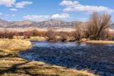 493 Threadgrass/Cotton Willow - Photo 48