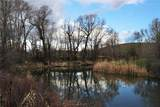 61 Swamp Creek - Photo 16