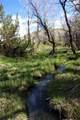 61 Swamp Creek - Photo 26