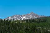 22 Moose Ridge Road - Photo 6