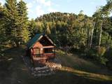 100 Pony Creek Road - Photo 13