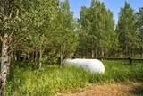 159 Mule Deer Road - Photo 40