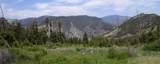 TBD Canyon Creek Road - Photo 4