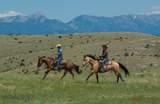 Lot 60 Tbd Horse Shoe Gulch Road - Photo 18