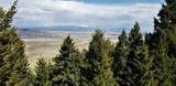 131 Antelope Flats - Photo 5