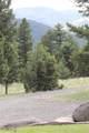 26 Horseshoe Trail - Photo 39
