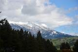 335 Silvertip Trail - Photo 39