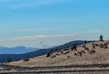 TBD Wild Horse Meadow - Photo 32