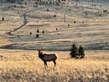 TBD Wild Horse Meadow - Photo 27
