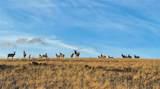 TBD Wild Horse Meadow - Photo 31