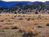 TBD Wild Horse Meadow - Photo 28