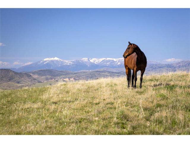 TBD Clarkston Road Road, Three Forks, MT 59752 (MLS #300443) :: Black Diamond Montana