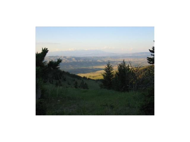 Tract 57 Coyote Drive, Livingston, MT 59047 (MLS #300478) :: Black Diamond Montana
