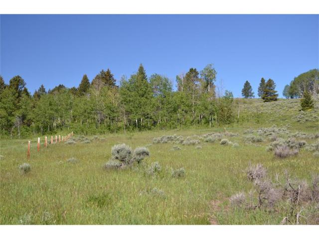 Lot 20 Crown Butte Road, Big Sky, MT 59716 (MLS #300504) :: Black Diamond Montana