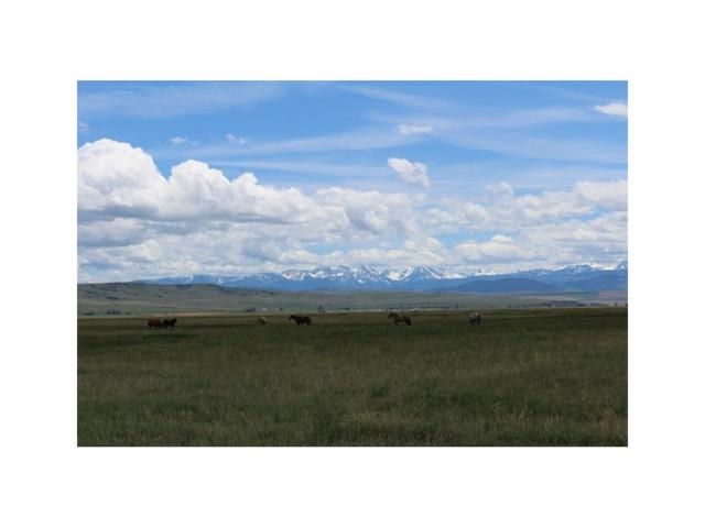 6630 Madison River Rd, Three Forks, MT 59752 (MLS #300507) :: Black Diamond Montana