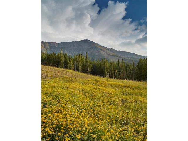 TBD High Camp Road Lot N, Big Sky, MT 59716 (MLS #300620) :: Black Diamond Montana