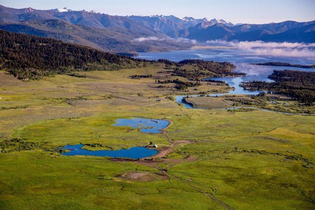 1850 Buttermilk Creek Road, West Yellowstone, MT 59758 (MLS #303666) :: Black Diamond Montana