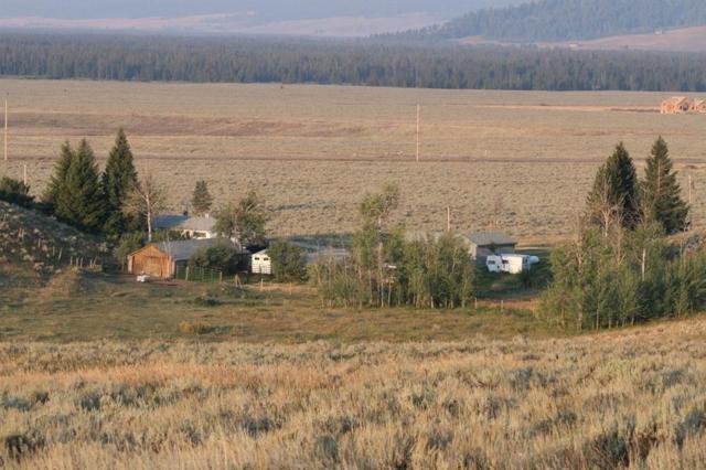 280 Whitman Road, West Yellowstone, MT 59758 (MLS #304170) :: Black Diamond Montana