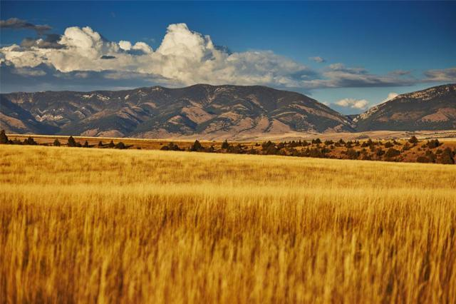 1050 Theisen Ranch Road, Belgrade, MT 59714 (MLS #304236) :: Black Diamond Montana