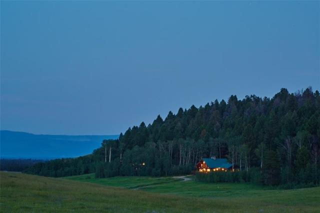 423 Yellowstone Ranch Preserve Ranch 3, West Yellowstone, MT 59758 (MLS #306875) :: Black Diamond Montana