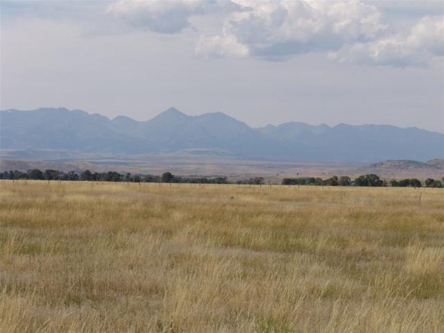 TBD Windsong Way, Big Timber, MT 59011 (MLS #308247) :: Black Diamond Montana