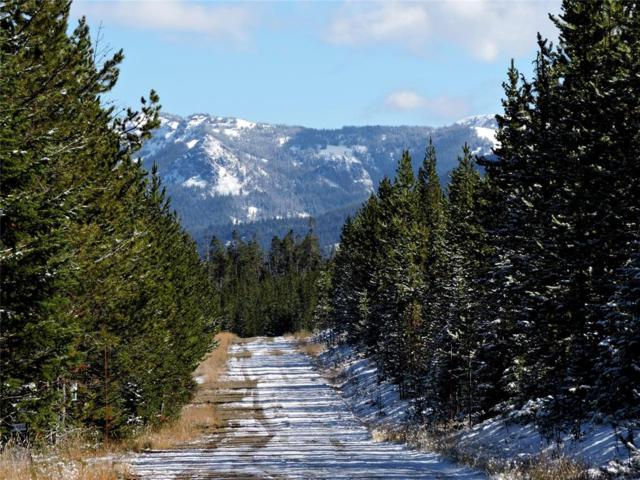 Lot 23 Beaver Creek West, Big Sky, MT 59716 (MLS #309549) :: Black Diamond Montana